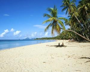Déménagement en Martinique