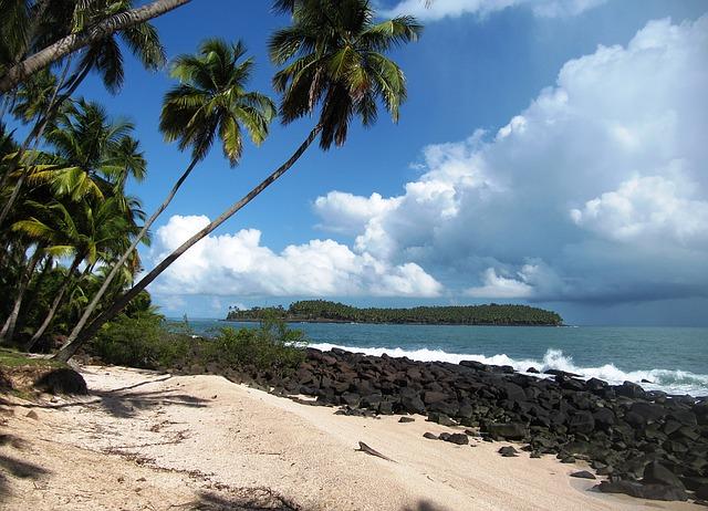 Déménagement-Guyane